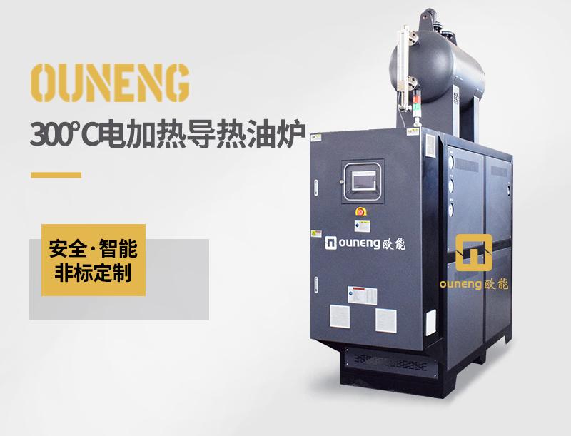300℃电加热导热油炉